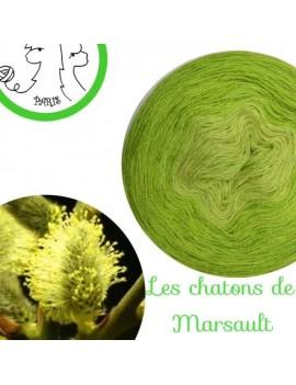 """Fil Lace Mérinos et Soie (long gradient cake yarn) """"Châtons de Marsault"""""""