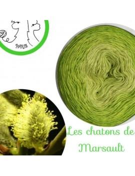 """Fil Single Fingering Mérinos et Soie (long gradient yarn cake) """"Les Châtons de Marsault"""""""