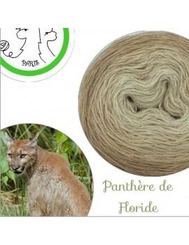 "Fil fingering Alpaga Soie (long gradient yarn cake) ""Panthère de Floride"""