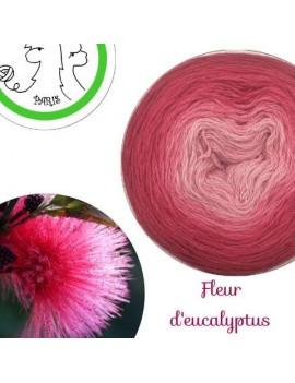 "Fil fingering Alpaga Soie (long gradient yarn cake) ""Fleur d'Eucalyptus"""