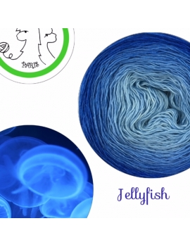 Jellyfish Fil Single Fingering Merinos & silk (long gradient yarn cake)