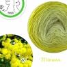 """Mimosa"" Fil fingering Baby Alpaga et Soie (long gradient yarn cake)"