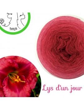 """Fil Lace Mérinos et Soie (long gradient cake yarn) """"Lys d'un Jour"""""""