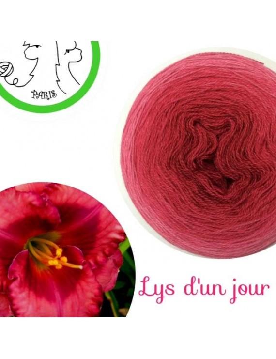 """Fil Lace 100 % Mérinos (gradient cake yarn) """"Lys d'un Jour"""""""