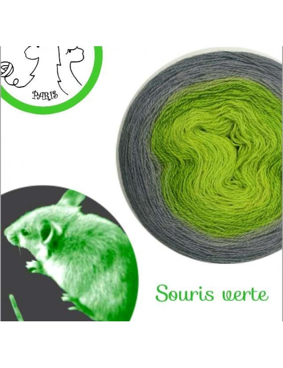 """Fil Lace Mérinos et Soie (long gradient cake yarn) """"Souris Verte"""""""