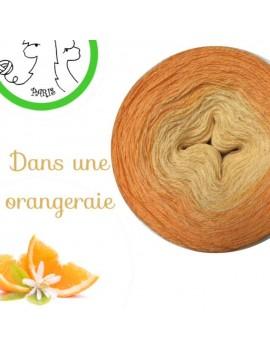 """Fil Lace Mérinos (long gradient cake yarn) """"Dans une Orangeraie"""""""