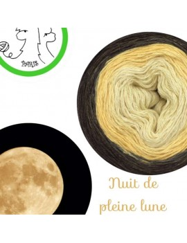 "Fil fingering Alpaga Soie (long gradient yarn cake) ""Nuit de Pleine Lune"""