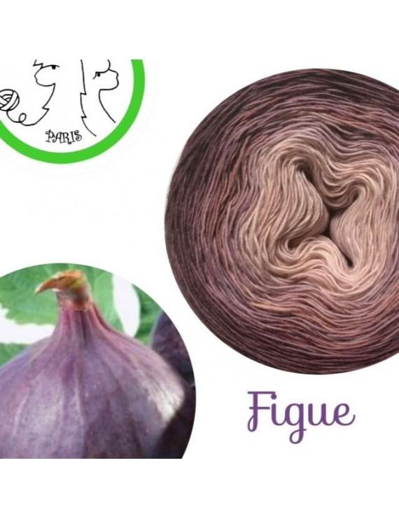 "Fil Single Fingering Mérinos (long gradient yarn cake) ""Figue"""