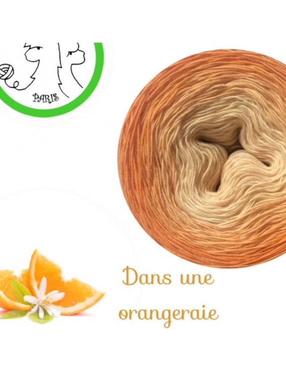 "Fil Single Fingering Mérinos (long gradient yarn cake) ""Dans une Orangeraie"""