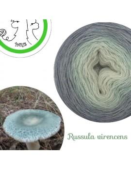 "Fil fingering Alpaga Soie (long gradient yarn cake) ""Russula Virencens"""