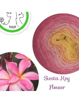 "Fil fingering Alpaga Soie (long gradient yarn cake) ""Siesta Key Flower"""