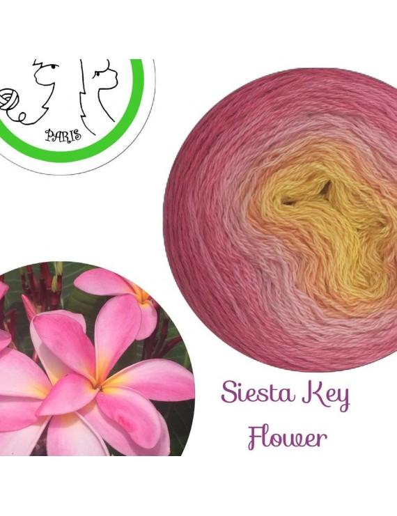 "Fil fingering Alpaga Soie (long gradient yarn cake) ""Siesta Key Flower"""