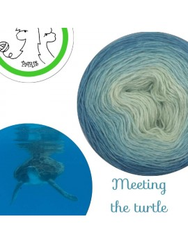 "Fil fingering Alpaga Soie (long gradient yarn cake) ""Meeting the Turtle"""