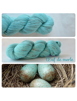 """Oeuf de Merle"" Single Fingering Merino Yarn"