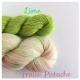 """Fraise Pistache+Lime"" Sock Yarn Merino Alpaca & Nylon"