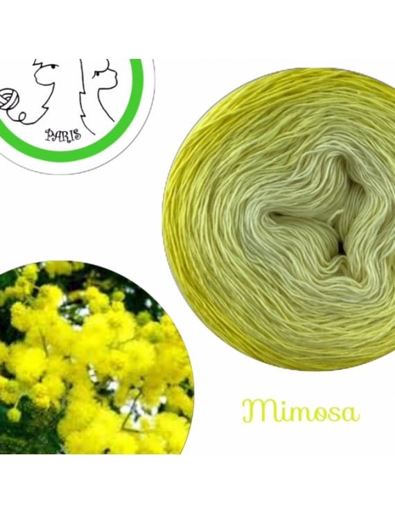 Mimosa Fil Single Fingering Mérinos & soie (long gradient yarn cake)