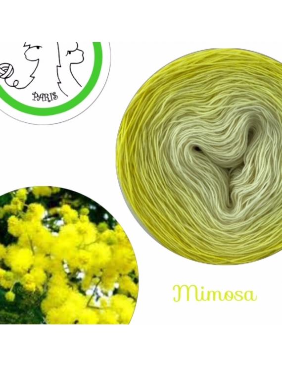 """Mimosa"" Fil Single Fingering Mérinos (long gradient yarn cake)"