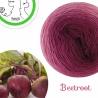 """Beetroot"" Single Fingering Merino (long gradient yarn cake)"