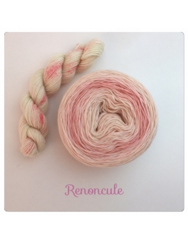 """Renoncule"" Double Gradient Sock Yarn Merino Alpaca & Nylon"