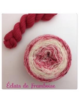 """""""Eclats de Framboise"""" Double Gradient Fil à Chaussette Mérinos Alpaga & Nylon"""