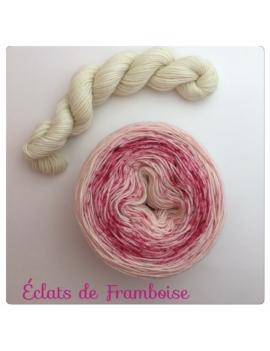 """Eclats de Framboise"" Double Gradient Sock Yarn Merino Alpaca & Nylon"