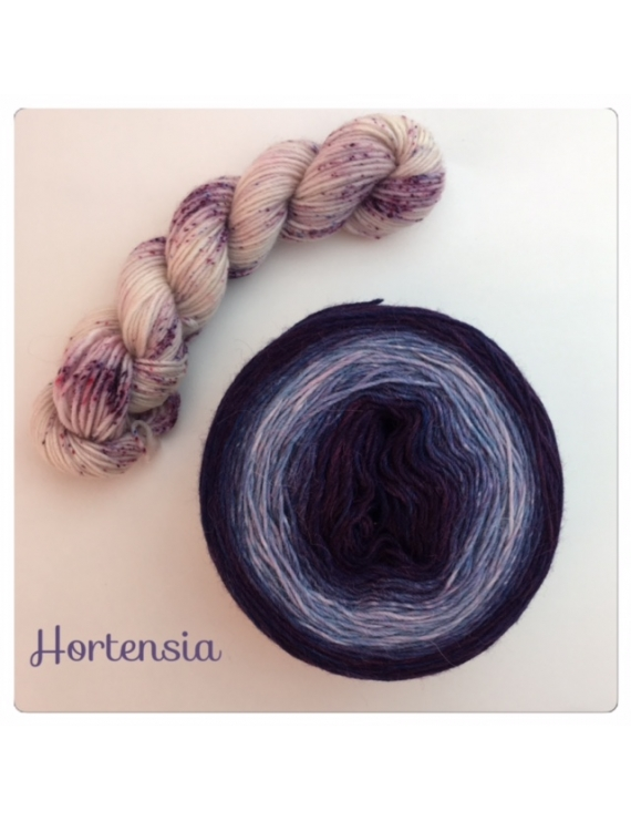"""""""Hortensia"""" Double Gradient Fil à Chaussette Mérinos Alpaga & Nylon"""