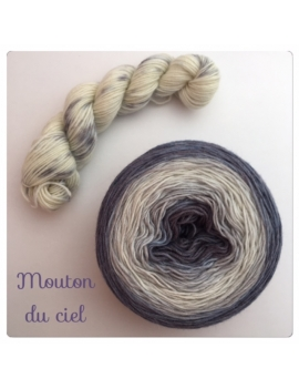 """Mouton du Ciel"" Double Gradient Sock Yarn Merino Alpaca & Nylon"
