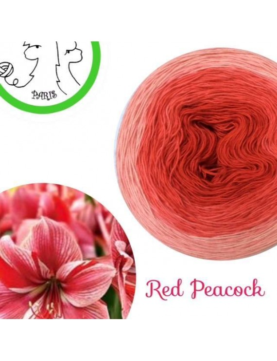 "Fil Single Fingering Mérinos (long gradient yarn cake) ""Red Peacock"""
