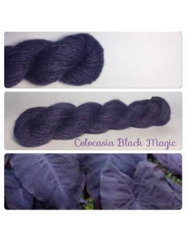 """Colocasioa Black Magic "" Angora & Baby Alpaga Noir"