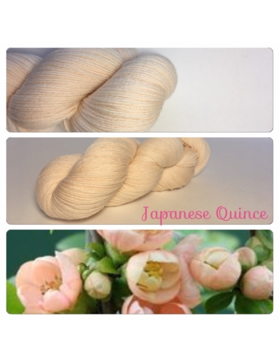 """Japanese Quince"" Fil Fingering 100% Mérinos"