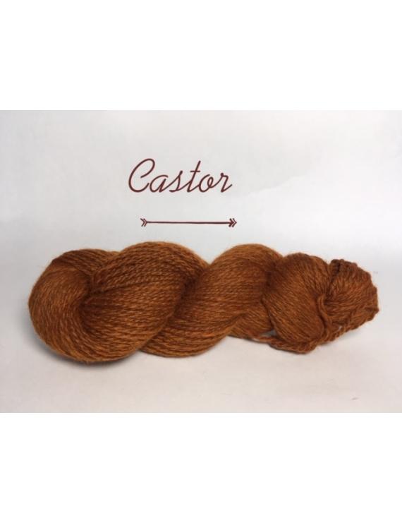 """Castor"" Fil DK Baby Alpaga/Ile de France"