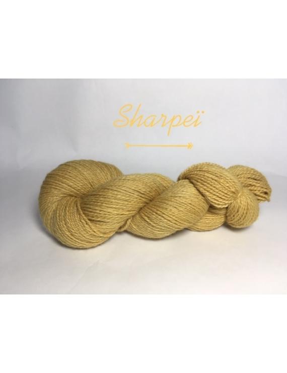 """Sharpeï"" Fil DK Baby Alpaga/Ile de France"