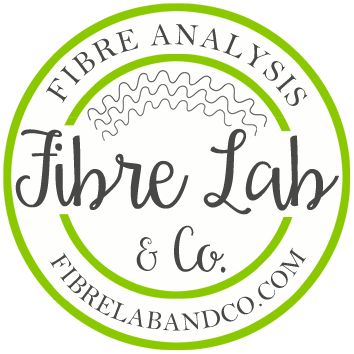FIBRE LAB AND CO